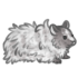 Grey Long Haired Hamster.png